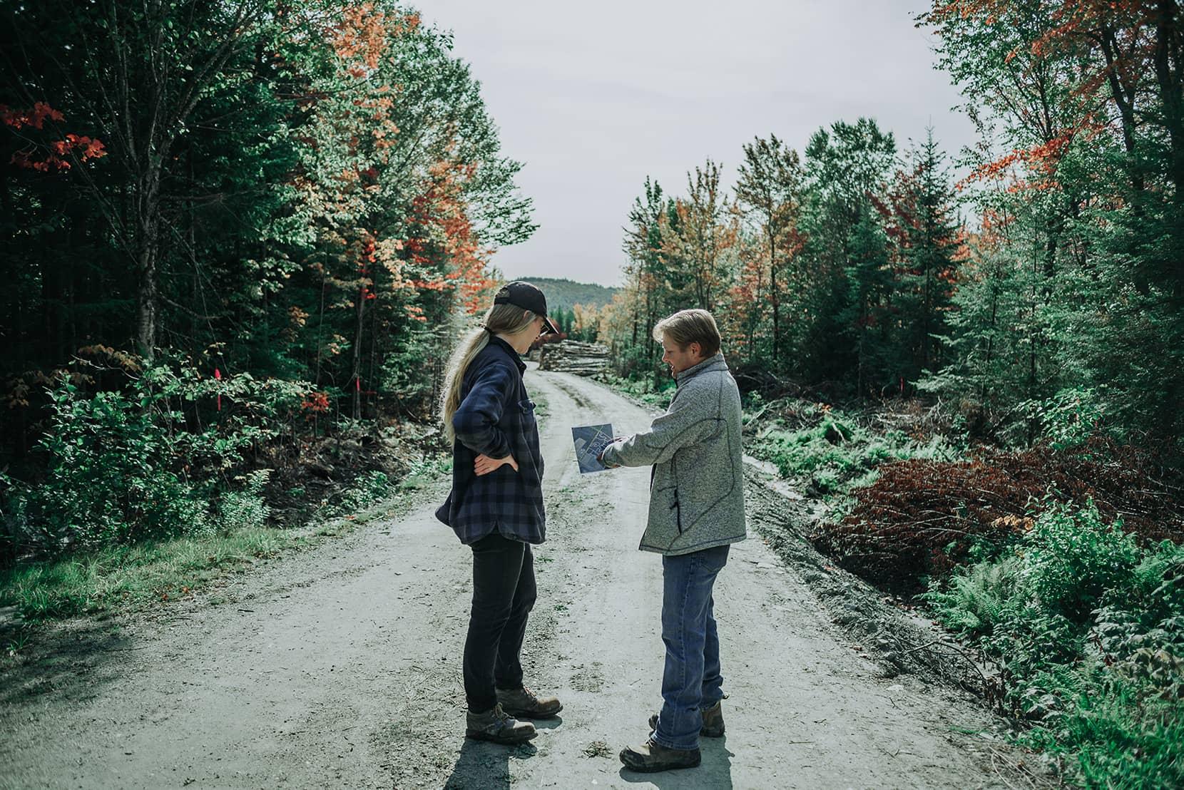 Laforêt - Planification forestière et visite-conseil